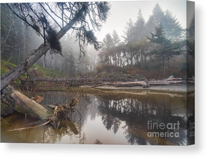 Landscape Canvas Print featuring the photograph Cedar Creek Lagoon by Don Hall