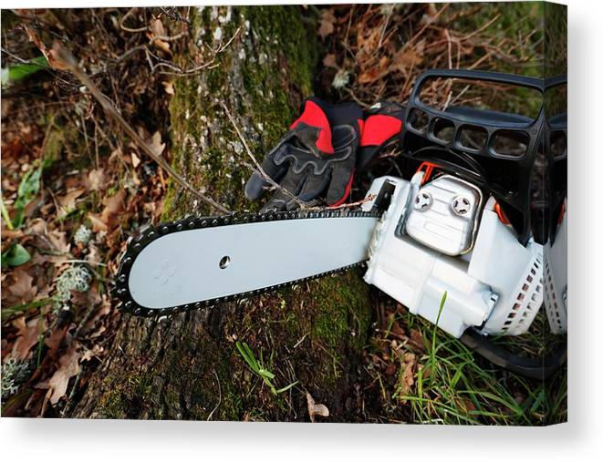 Chainsaw Canvas Print featuring the photograph Chainsaw And Gloves by Christian Lagerek/science Photo Library
