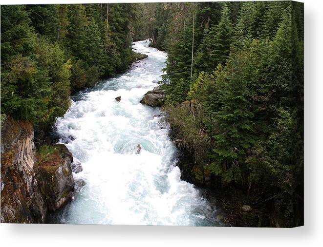 River Canvas Print featuring the photograph Cheakamus Lake Source - Whistler by Amanda Holmes Tzafrir