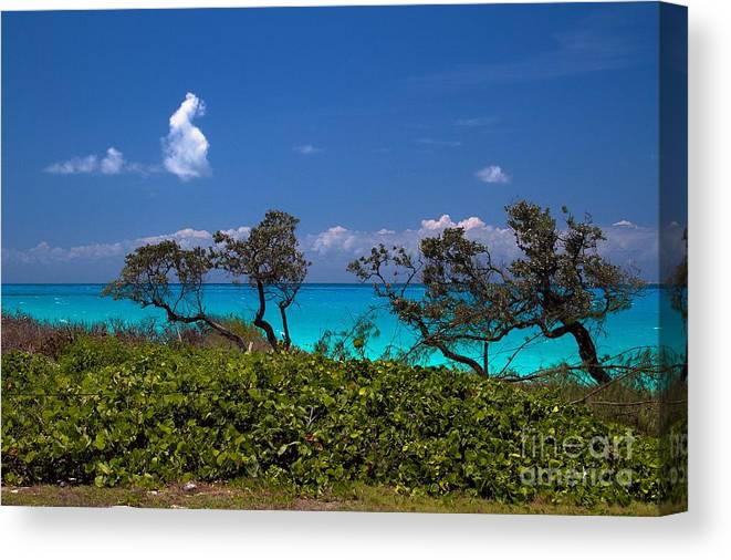 Exuma Canvas Print featuring the photograph Clouds On The Horizon by Cheryl Hurtak