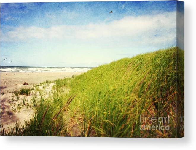 Ocean Canvas Print featuring the photograph Coastal Dunes by Sylvia Cook