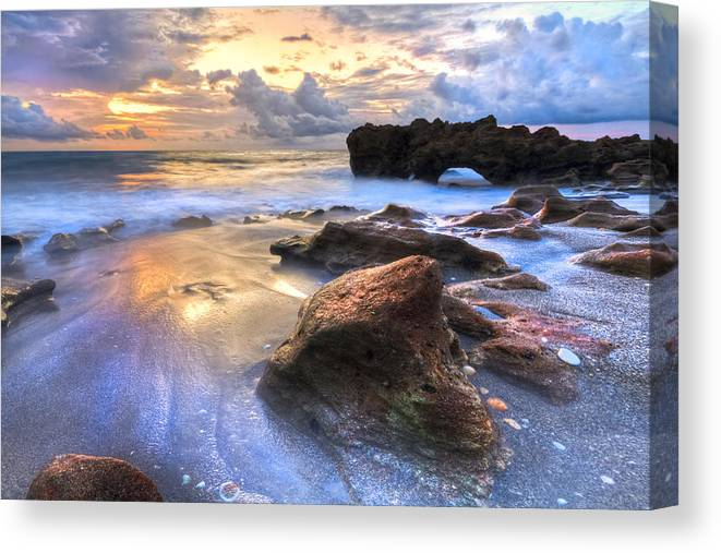 Blowing Canvas Print featuring the photograph Coral Garden by Debra and Dave Vanderlaan