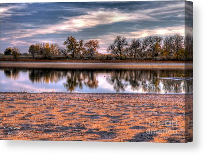 Landscape Canvas Print featuring the photograph Cottonwoods At Barr Lake by Ron Taylor