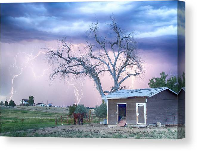 Country Canvas Print featuring the photograph Country Horses Riders On The Storm by James BO Insogna