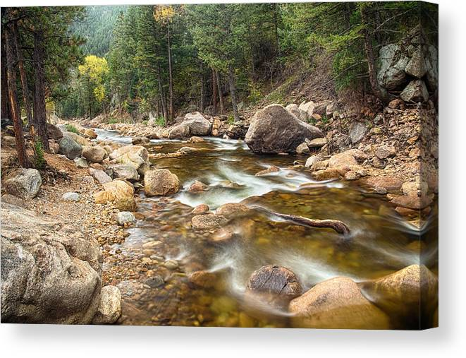 Mountains Canvas Print featuring the photograph Down Stream by James BO Insogna