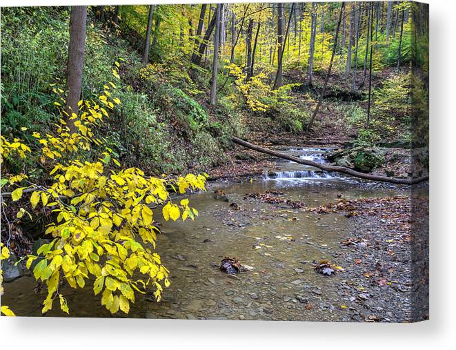Cuyahoga Canvas Print featuring the photograph Downstream Blue Hen Falls by Denny Beck