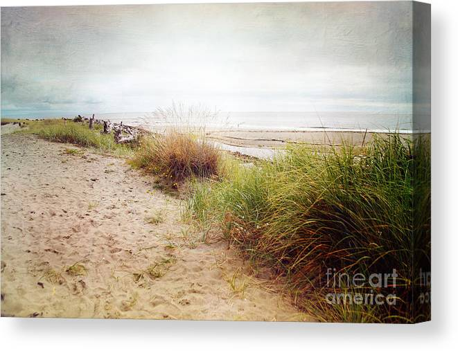 Ocean Canvas Print featuring the photograph Dunes by Sylvia Cook