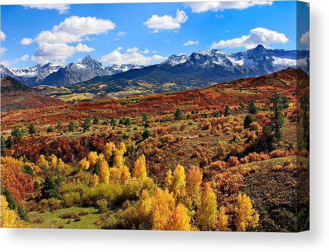 Brett Canvas Print featuring the photograph Fall Colors In Ridgway Colorado by Brett Pfister