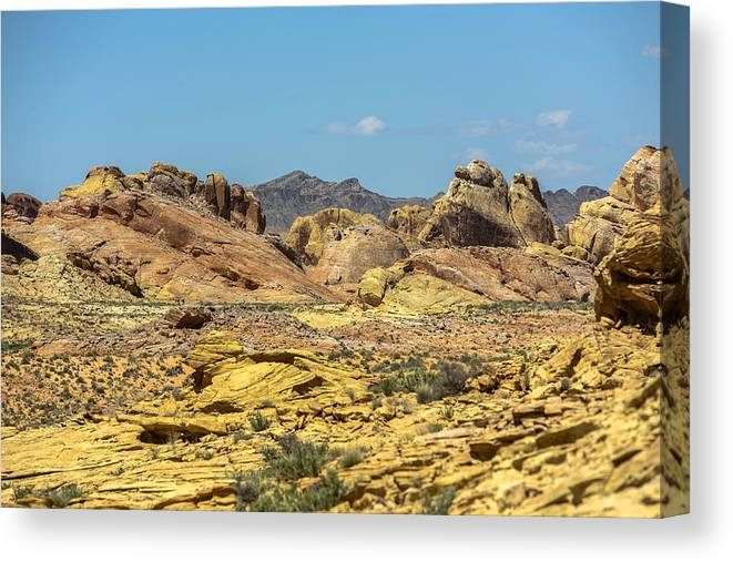 Valley Of Fire Canvas Print featuring the photograph Field Of Color by Eric Swan