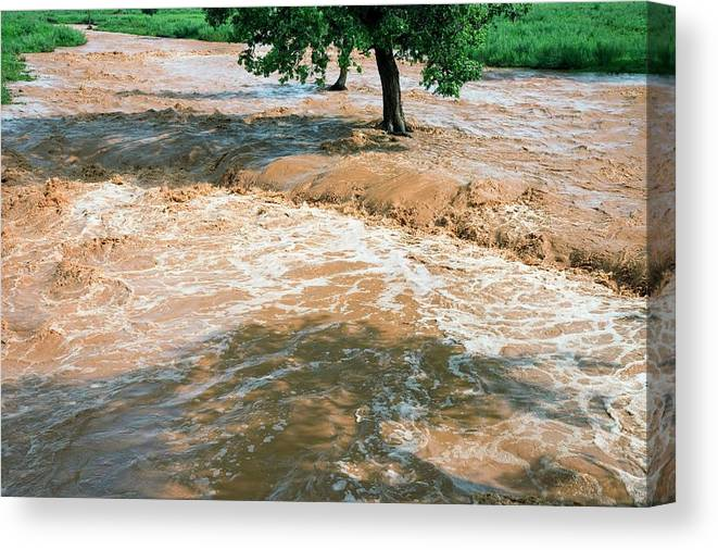 Africa Canvas Print featuring the photograph Flooded River by Peter Menzel/science Photo Library