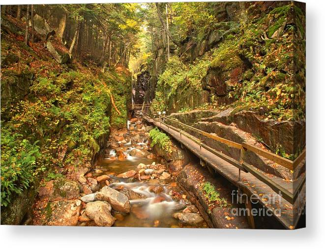 Flume Gorge Canvas Print featuring the photograph Flume Gorge Landscape by Adam Jewell