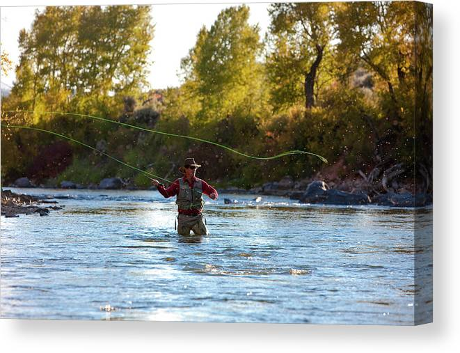 Colorado Canvas Print featuring the photograph Fly Fishing by Jack Affleck