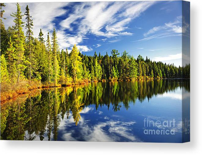 Lake Canvas Print featuring the photograph Forest Reflecting In Lake by Elena Elisseeva