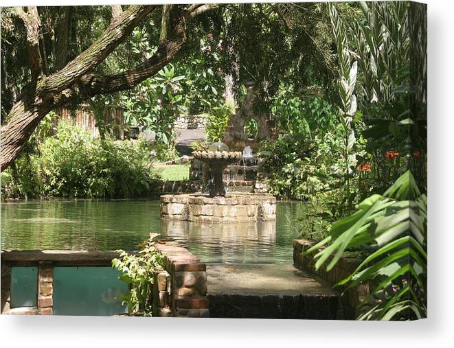 Fountain Canvas Print featuring the photograph Fountain Of Youth by Dervent Wiltshire