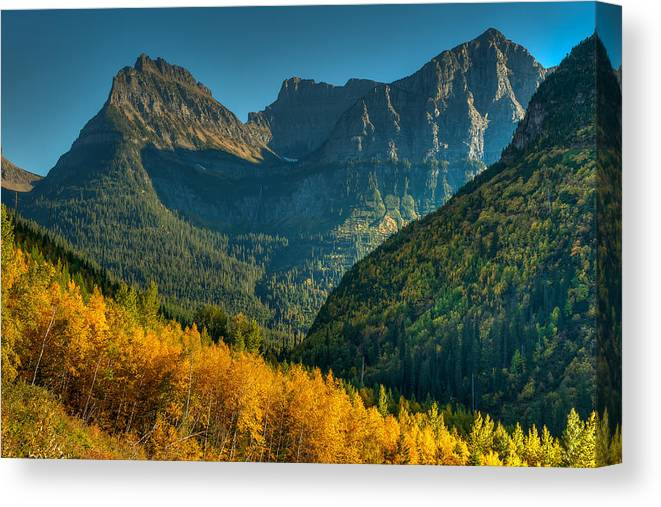 Aspens Canvas Print featuring the photograph Going To The Sun Road by Brenda Jacobs