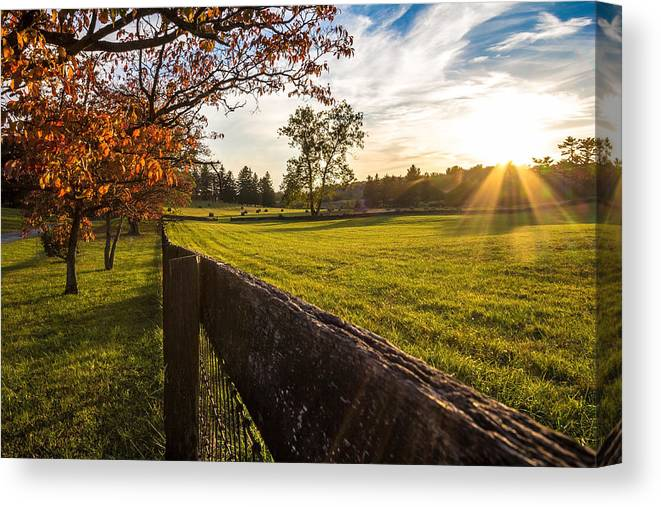 Autumn Canvas Print featuring the photograph Golden Sunset At The State Arboretum Of Virginia by Denise McLaurin