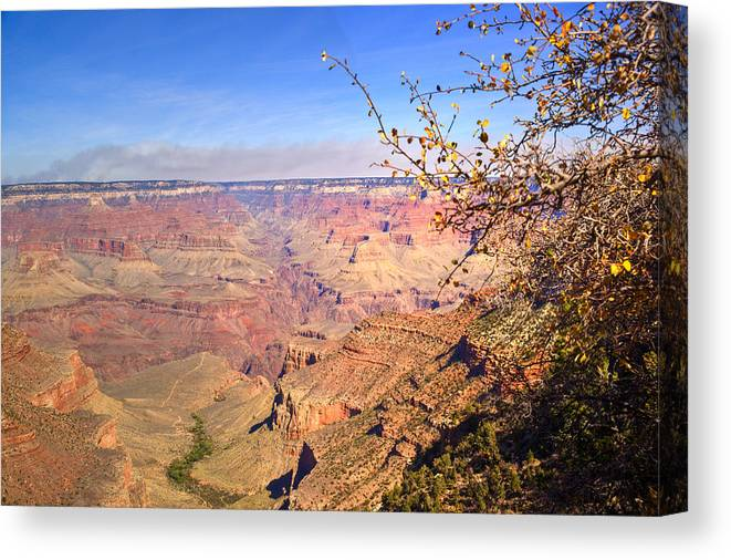 Grand Canvas Print featuring the photograph Grand Canyon 15 by Douglas Barnett