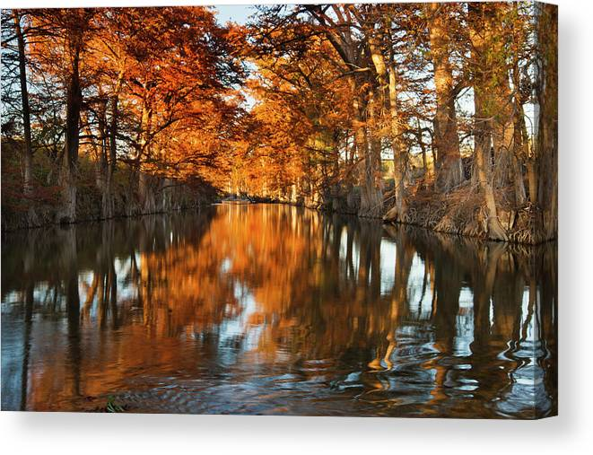 Autumn Canvas Print featuring the photograph Guadalupe River, Texas Hill Country by Larry Ditto