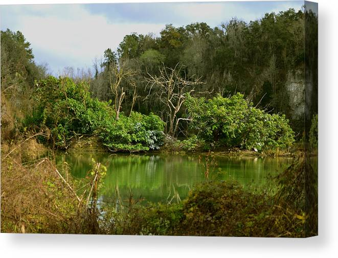 Limestone Canvas Print featuring the photograph Hidden Beauty by DigiArt Diaries by Vicky B Fuller