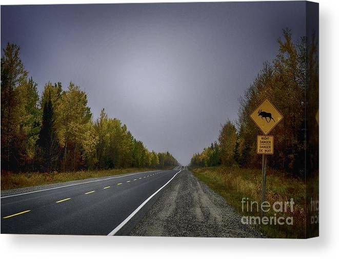Foliage Canvas Print featuring the photograph Highway Of Foliage by Richard W Lamoureux