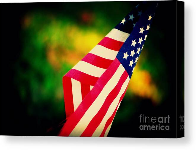 Flag Canvas Print featuring the photograph Home-land by Susanne Van Hulst