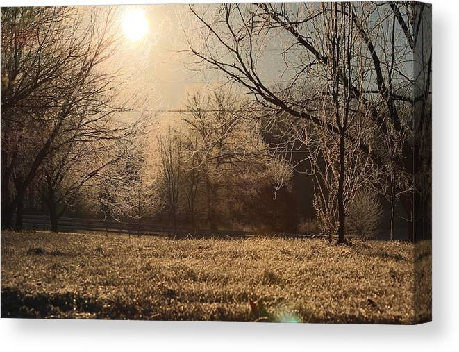Ice Canvas Print featuring the photograph Icey Beauty by Scott Watson