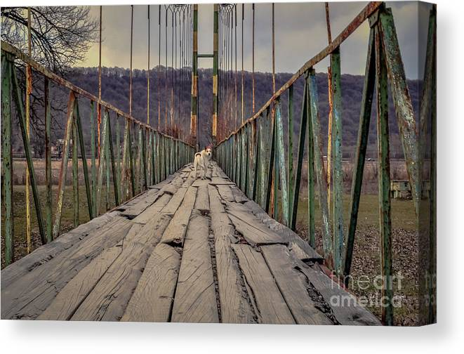 Landscape Canvas Print featuring the photograph I'll Be Back You Just Hail by Lyudmila Prokopenko