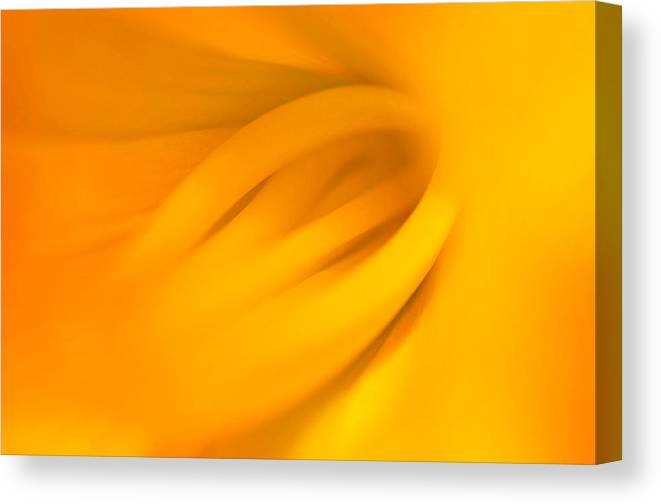 Nature Canvas Print featuring the photograph Inner Beauty by Joan Herwig