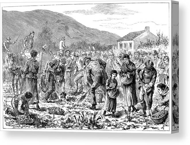 1886 Canvas Print featuring the painting Ireland Peasants, 1886 by Granger