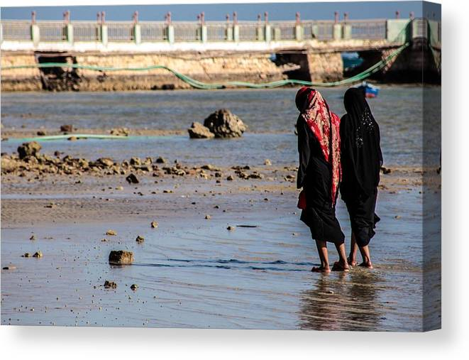 Egypt Canvas Print featuring the photograph It Could Just Be Us by Jez C Self