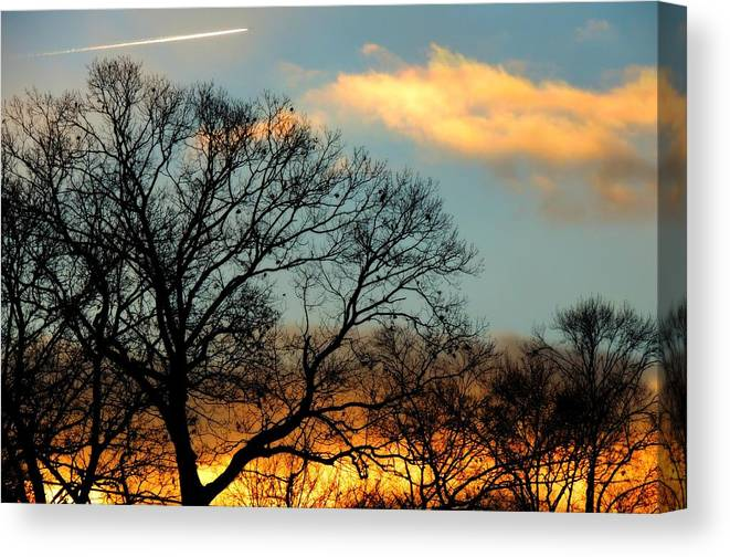 Sunrise Canvas Print featuring the photograph Jet Plane by Michele Nelson