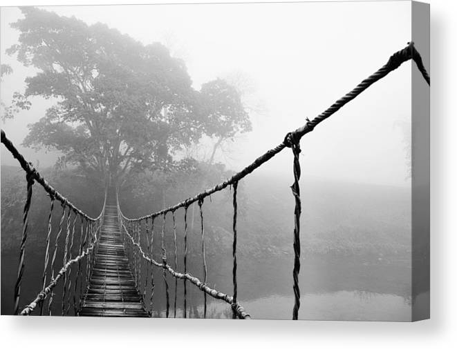 Absence Canvas Print featuring the photograph Jungle Journey 5 by Skip Nall