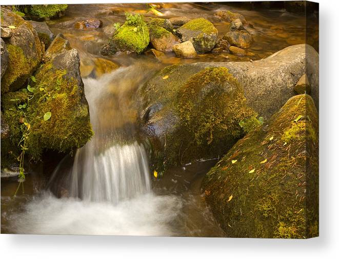 La Sal Mountains Canvas Print featuring the photograph La Sal Waterfallet by Duncan Mackie