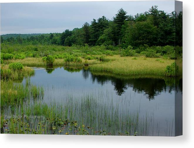 Pennsylvania Canvas Print featuring the photograph Lake And Bog by Paul Yoder