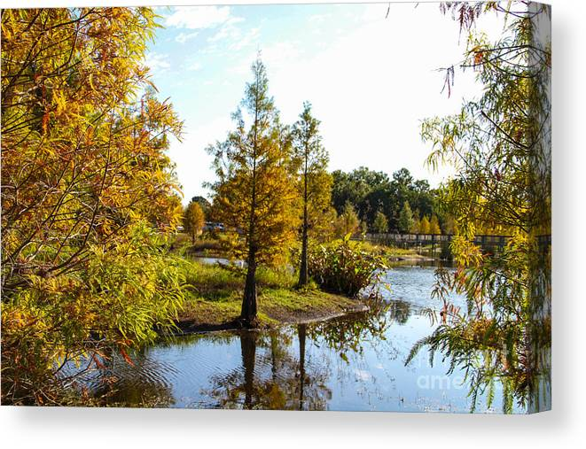 Lake Howard Canvas Print featuring the photograph Lake Howard - Fall Color In The Park by RJ Powell Studios