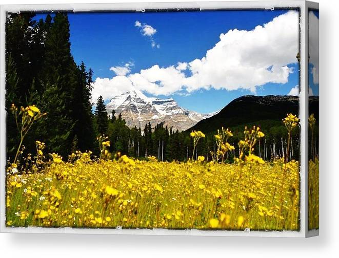 Landscape Canvas Print featuring the photograph Landscape Of Canada 2 by Lucas Lee