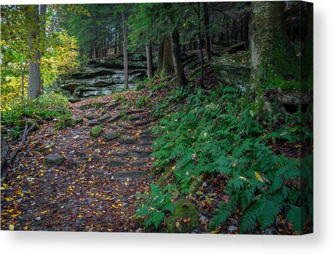 Cuyahoga Canvas Print featuring the photograph Ledges Overlook Trail 4 by Denny Beck