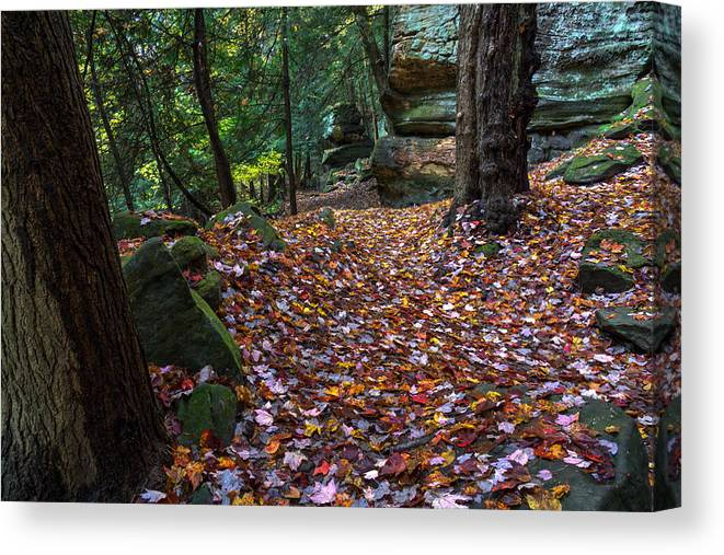 Cuyahoga Canvas Print featuring the photograph Ledges Overlook Trail 5 by Denny Beck