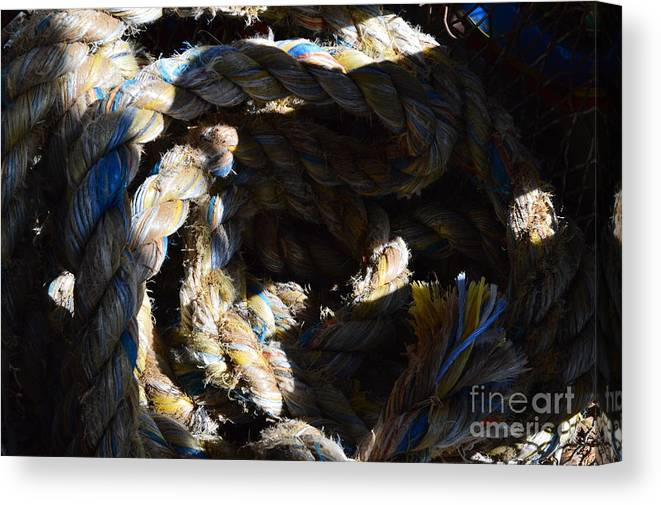 Lines Canvas Print featuring the photograph Lines by Jan Prewett