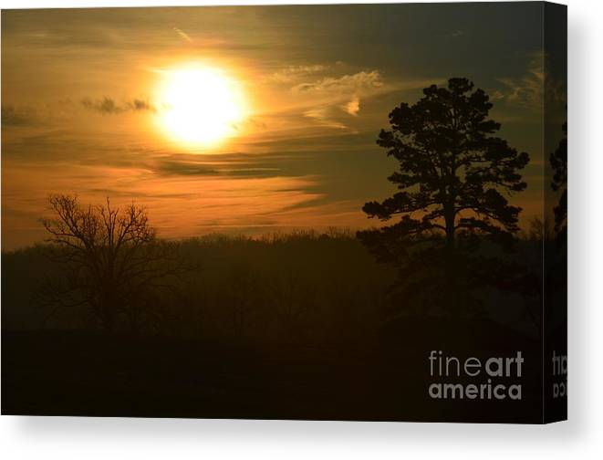 Sunrise Canvas Print featuring the photograph Lone Pine by Deanna Cagle