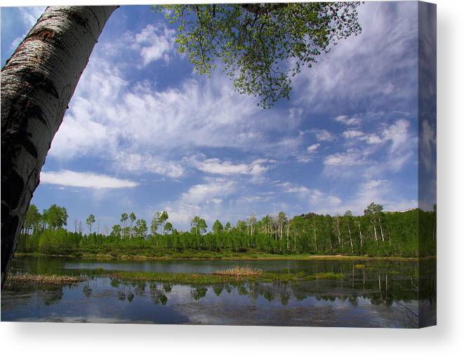 Midway Canvas Print featuring the photograph Midway Reservoir by Gene Praag