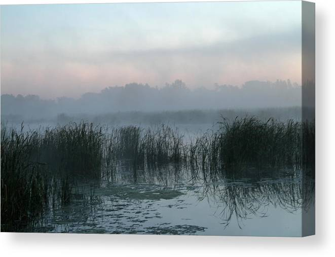 Blue Canvas Print featuring the photograph Misty Blue by Mark Pearson