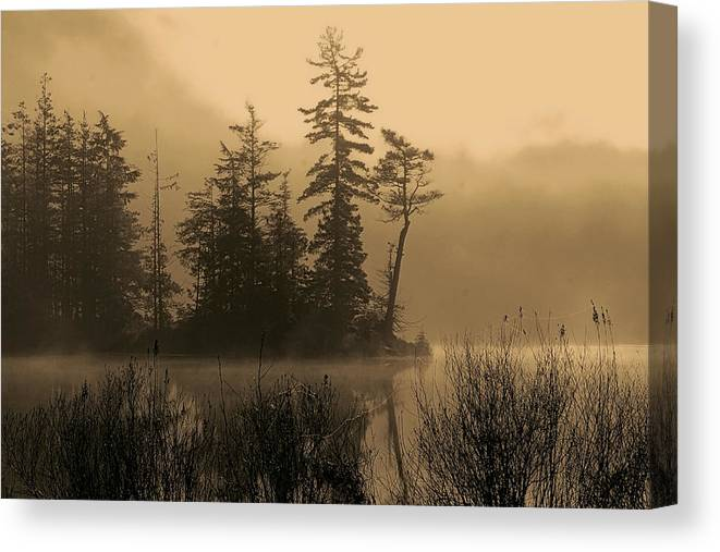 Silhouettes Canvas Print featuring the photograph Misty Lake And Trees Silhouette by Peggy Collins