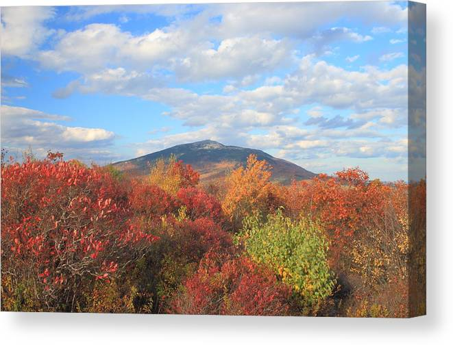 Mount Monadnock Canvas Print featuring the photograph Mount Monadnock From Gap Mountain In Autumn by John Burk
