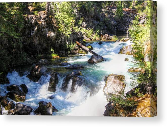 River Canvas Print featuring the photograph Natural Bridges by Melanie Lankford Photography