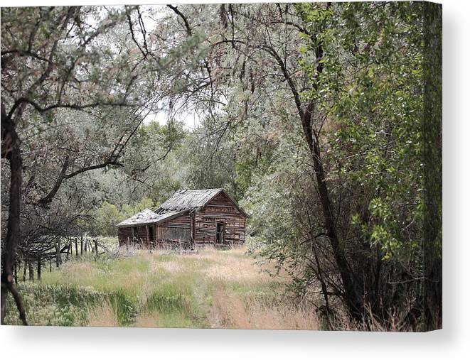 Old Farm House Canvas Print featuring the photograph Numbered Days by Floyd Tillery