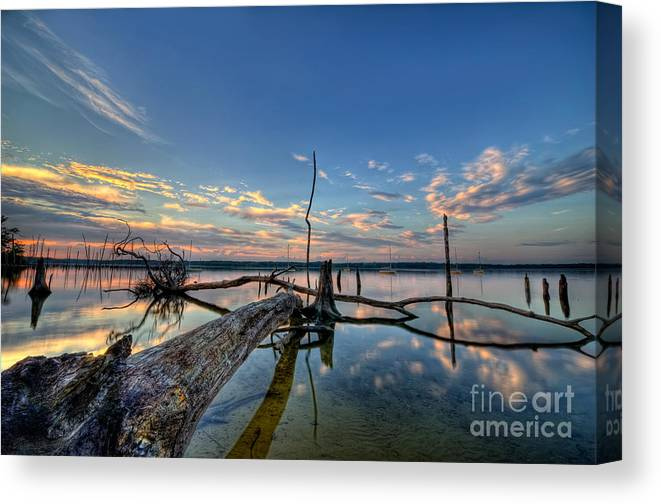 Manasquan Reservoir Canvas Print featuring the photograph Old Friends by Michael Ver Sprill