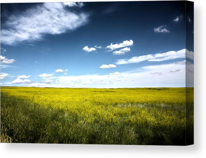 Pawnee National Grasslands Canvas Print featuring the photograph Pawnee Grasslands by Shane Bechler