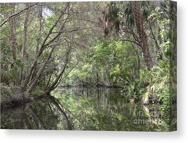 Creek Canvas Print featuring the photograph Pepper Creek II by Carol Bradley