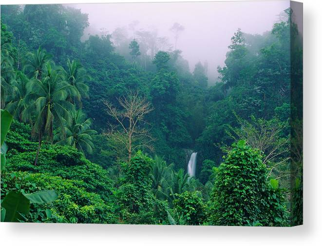 Philippines, Cagayan, Camiguin Island, Waterfall In Tropical Forest Canvas  Print